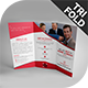 Maxlo Tri-Fold Brochure Template