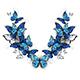 Symmetrical Pattern of Butterflies Morpho