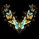 Symmetrical Pattern of Golden Butterflies