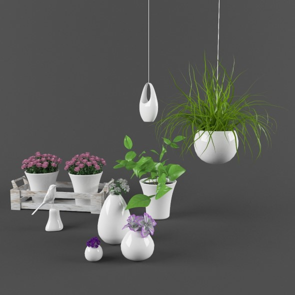Plants set with ceramic decore - 3DOcean Item for Sale