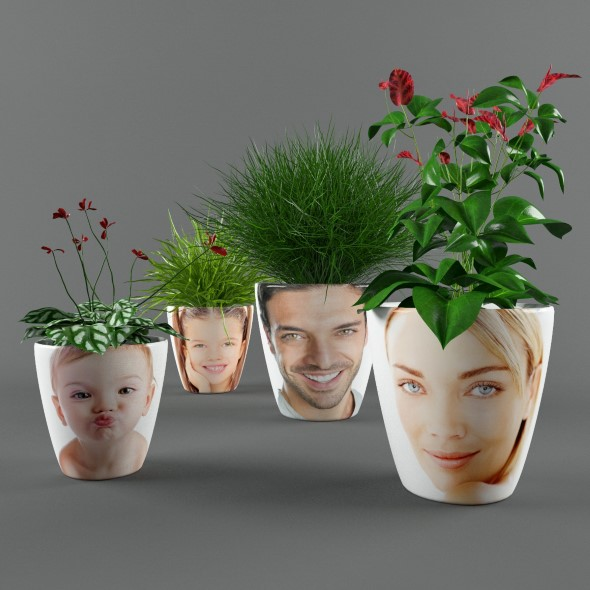3DOcean Plants in pots with photo 17593503