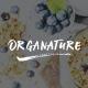 Organic Store PSD Template | Organature