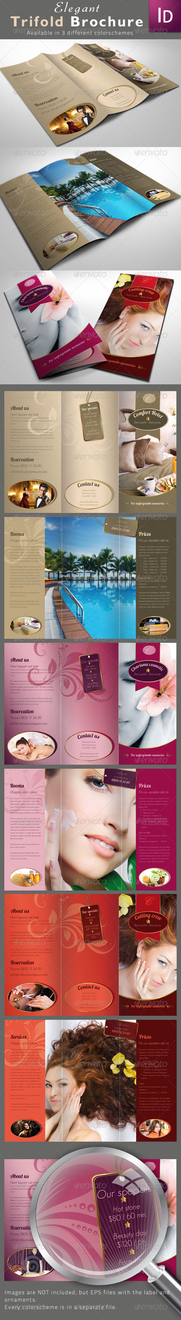 Elegant Trifold Brochures - Corporate Brochures