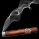 Burning Cigar with Ash and Smoke.