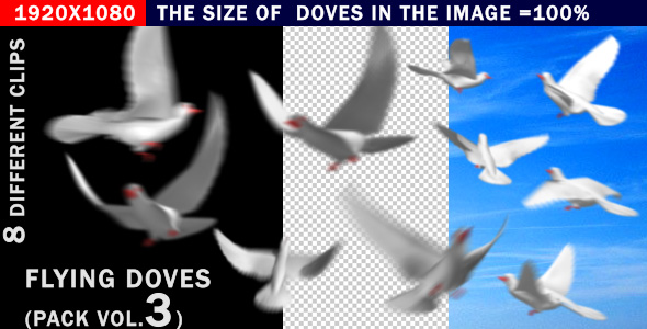 Stock Video - VideoHive Flying doves pack Vol.3 206682
