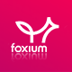 Foxium - Responsive Email Template