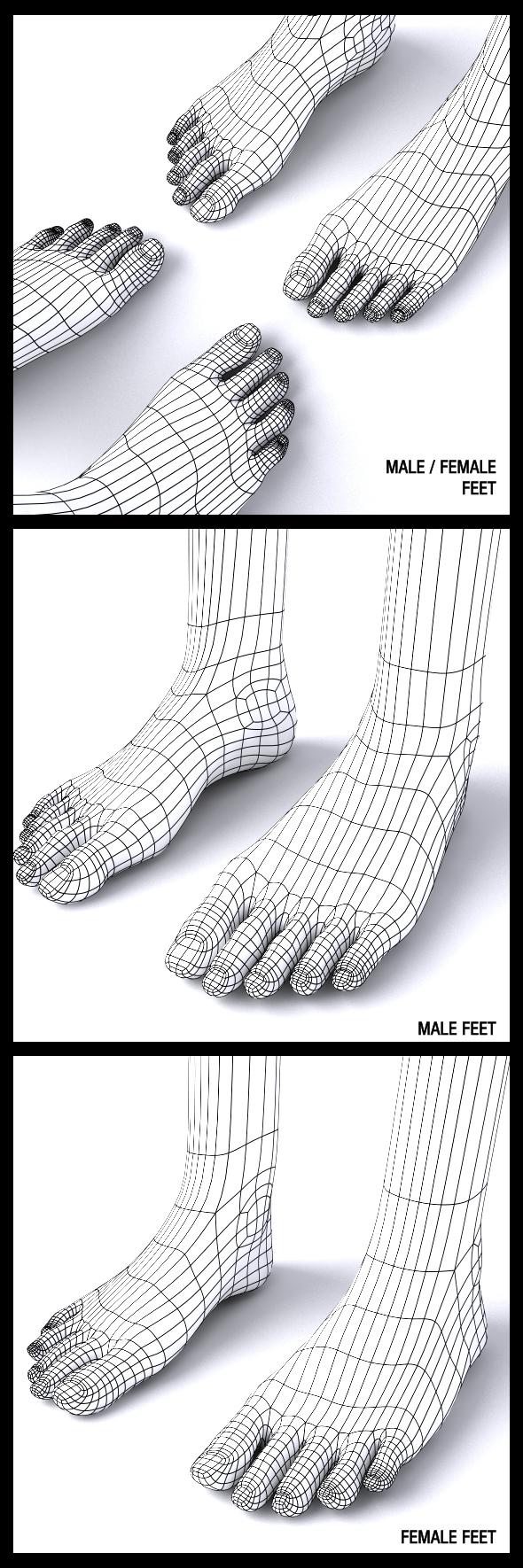 Male / Female Feet - 3DOcean Item for Sale