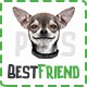 BestFriend - Pet Shop PSD Template