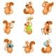 Squirrel Different Activities Set