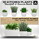 Kitchen Plants 3D