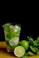 Mojito - a cooling drink