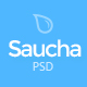 Saucha - Marketing & Seo PSD Template