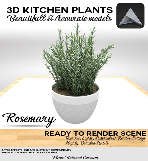 Rosemary Pot 3D - 3DOcean Item for Sale