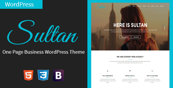 Download Sultan - One Page Business WordPress Theme nulled download