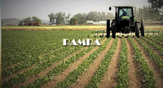 PAMPA AND AGRICULTURAL FOOTAGE