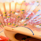 Hand Fan Decorated with Flowers