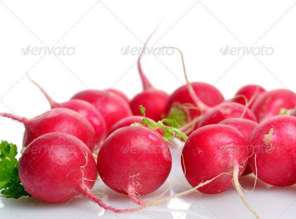 Fresh Radish - Stock Photo - Images