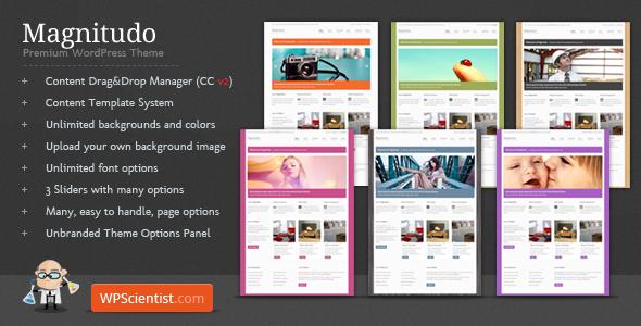 WordPress Theme : Magnitudo
