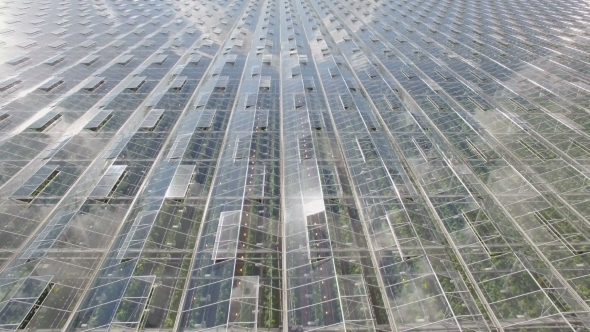 Download Aerial View Of Agricultural Greenhouses nulled download