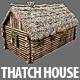 Wooden Thatch House