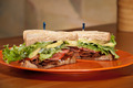 BLT Sandwich - PhotoDune Item for Sale