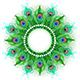 Mandala of Green Peacock Feathers