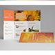 Eco Nature 3Fold Brochure