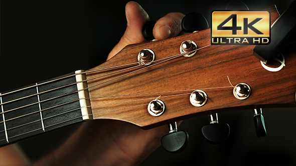 Download Guitar nulled download