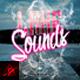 Lake Sounds Flyer