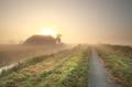 farmland at misty sunrise