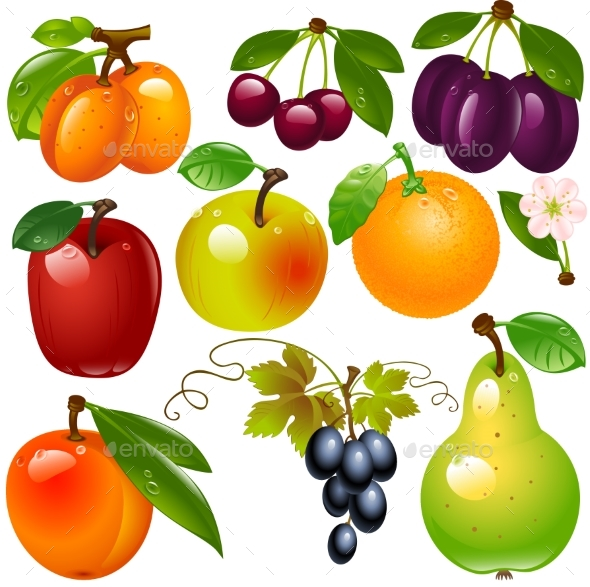 Fruit Set In Vector On a Transparent Background.