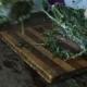 Woman Cuts Frozen Herbs