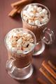 hot chocolate with mini marshmallows cinnamon winter drink