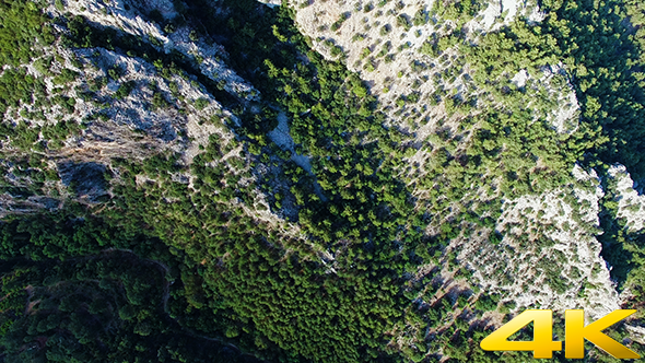 Download Flying over Green Trees and Mountain nulled download