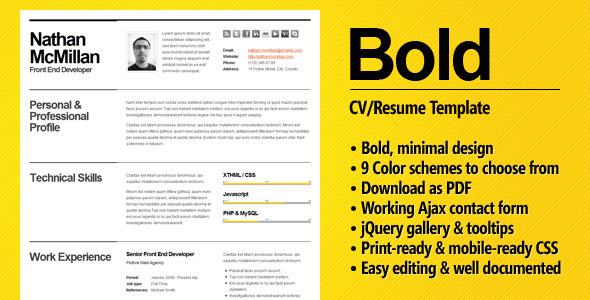 ThemeForest Bold CV Resume Template Minimal & Smart 210069