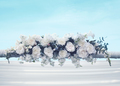 Wedding floral decorations gentle white flowers outdoors over bl