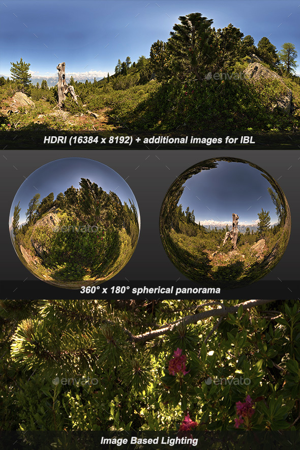 Alpenroses HDRI - 3DOcean Item for Sale