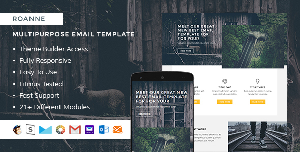 Roanne – Responsive Email + StampReady Builder