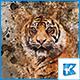 Watercolor 图片转水彩画特效-Graphicriver中文最全的素材分享平台