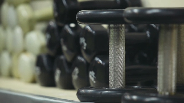 Download Sports Dumbbells. Fitness Equipment nulled download
