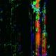 Noise Warp RGB Background