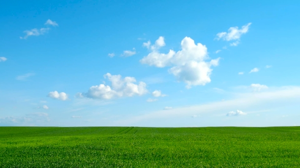 Download . Countryside Natural Background. Field With Wheat Germ. Cloudscape In Spring Sunny Day. Russia. nulled download