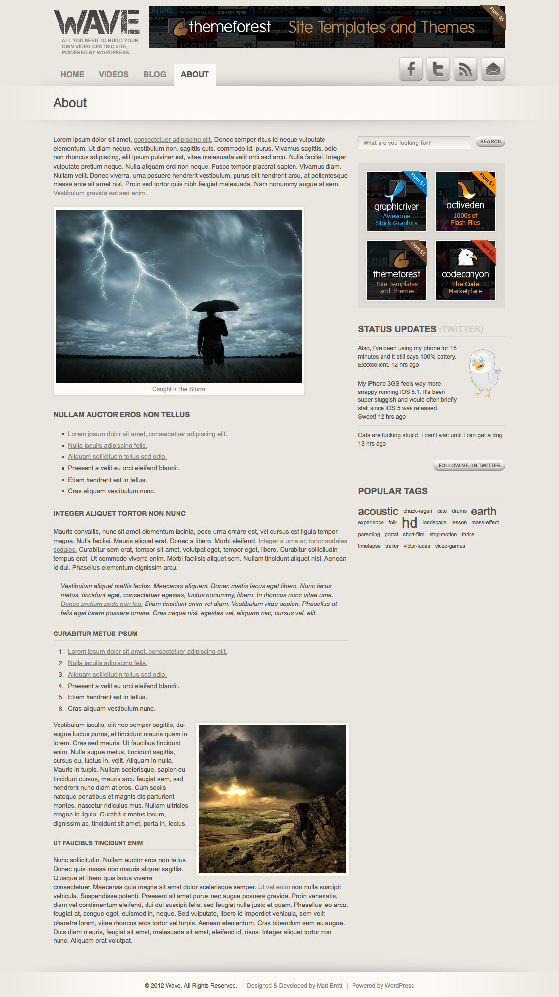 Wave: Video Theme for WordPress - Basic page template, showing typography and embedded image styles.
