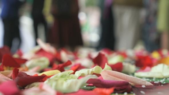 Download Wedding Tradition. Rose Petals Scattered On Carpet nulled download