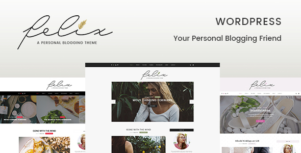 Download Felix – Personal Blogging WordPress Template nulled download