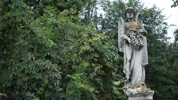 Download Beautiful Statue Of Angel At The Old Cemetery nulled download