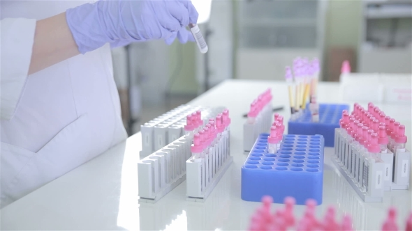 Download Unrecognizable Scientist Making Laboratory Analysis Of Blood nulled download