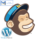 Wordpress Mailchimp Subscription Plugin