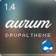 Aurum - Responsive Multipurpose Drupal Theme