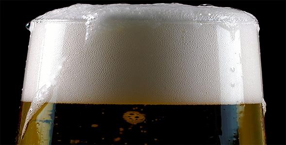 Download Beer nulled download